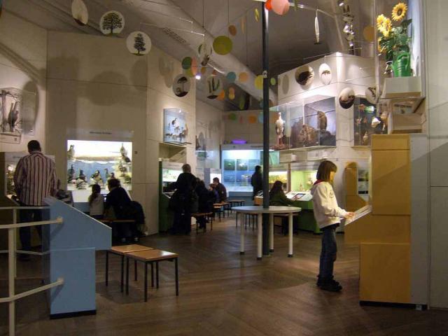 Museum Mensch und Natur München